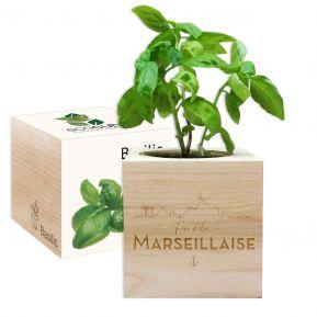 EcoCube Fier d'être Marseillais