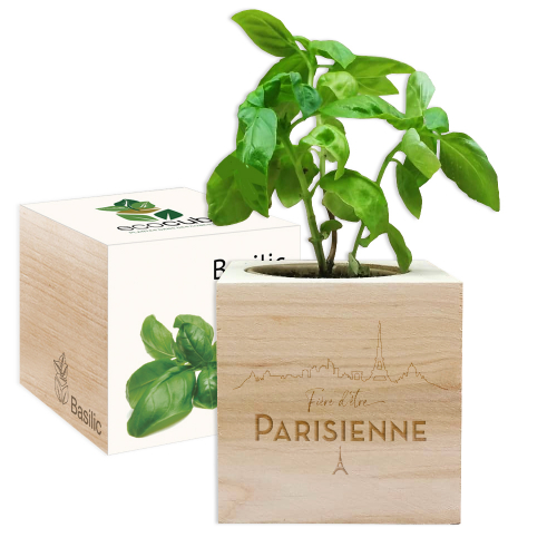 EcoCube en bois Fière d'être Parisienne